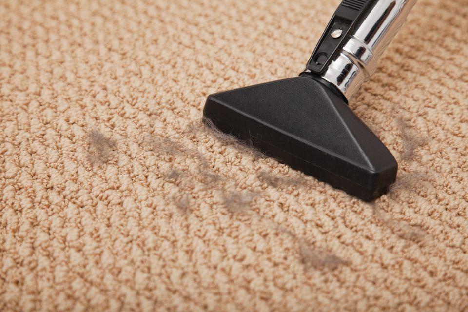 Close-up of vacuum cleaner cleaning carpet