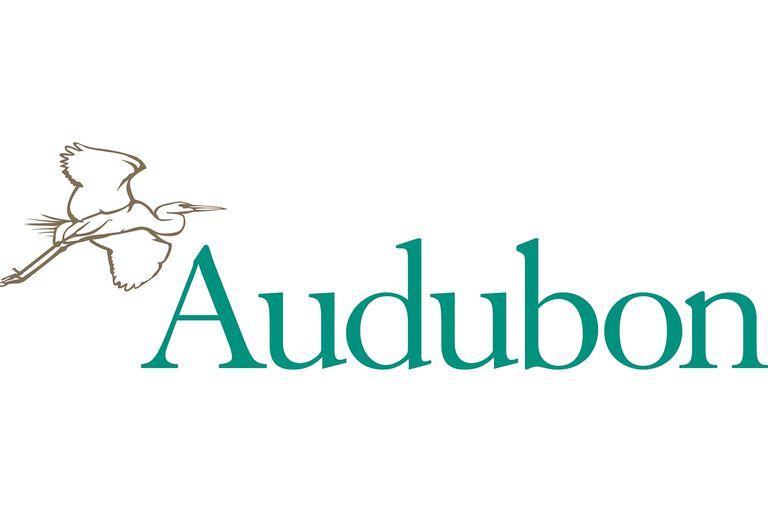 Good Audubon Christmas Cards #1: Audobon-society-58bd9bf53df78c353c6fb5ac.jpg