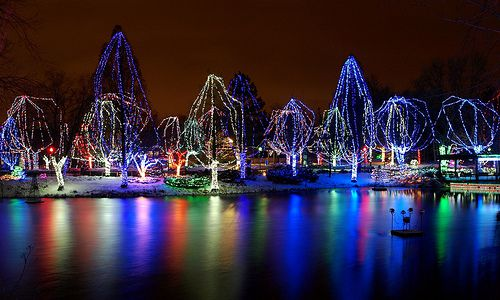 Columbus Zoo wildlights
