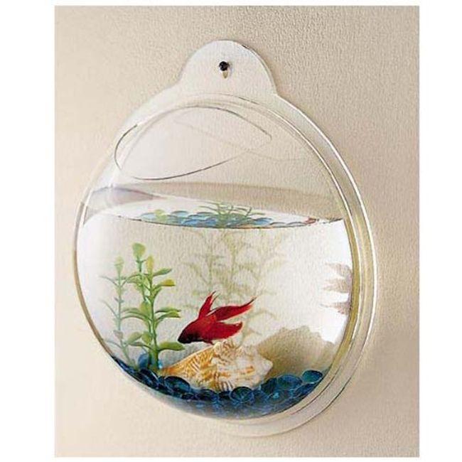 Wall Mount Fishbowl