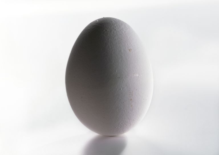 Do you believe it is easier to balance an egg on end on the equinox? Test it!