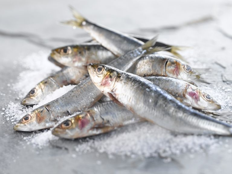 What causes fish allergies for Allergic reaction to fish