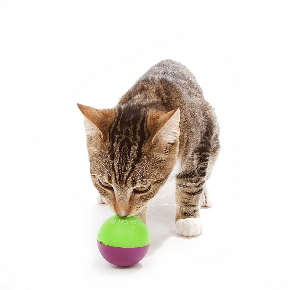 9 toys to keep cats happy when they u0027re home alone