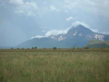 Savanna and tepui Canaima National Park