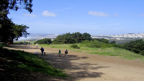 Fort Funston Dog Park