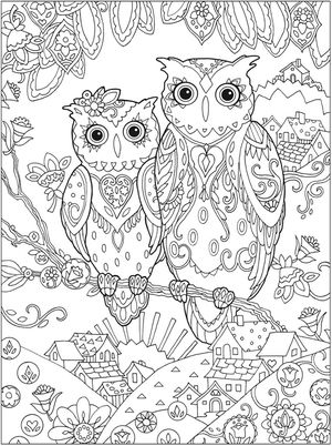free owl coloring pages for adults from dover publications - Printing Coloring Books