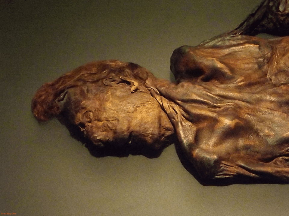 Clonycavan Man - Ireland's Most Famous Bog Body on Display in the National Museum