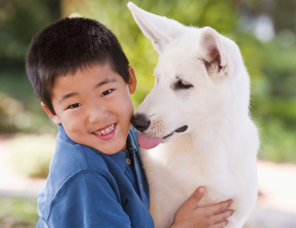 A picture of a dog licking a boy