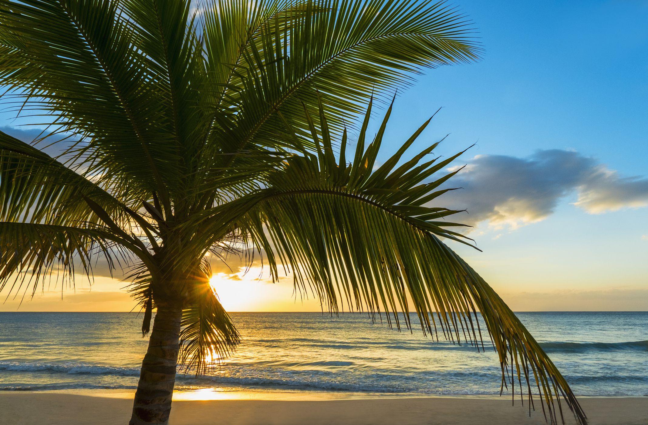 Jamaica Nude Beaches  Resorts-9140