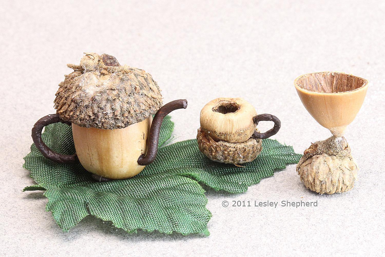 Use Acorns Or Hazlenuts To Make A Miniature Tea Set