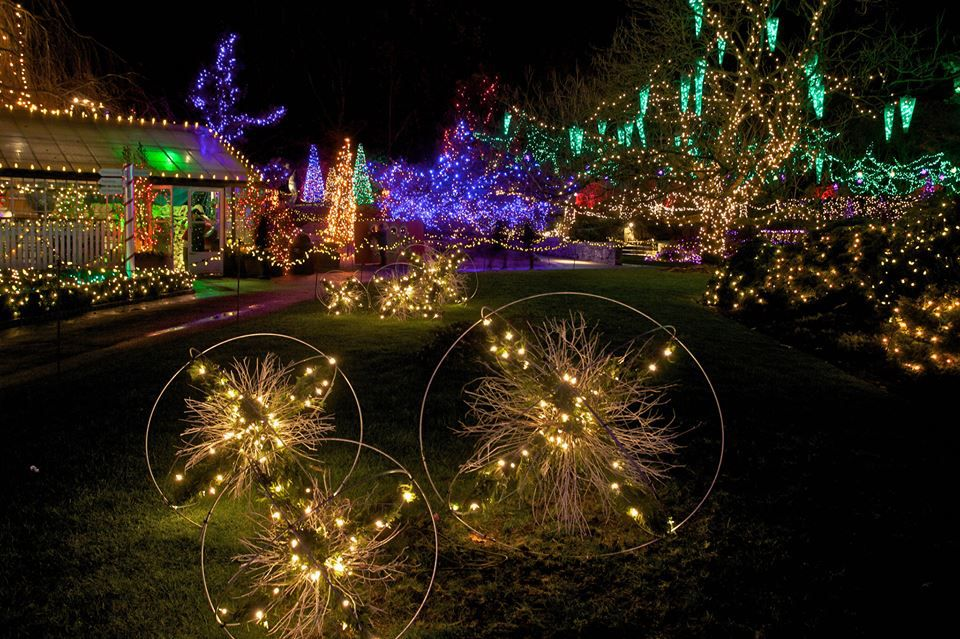 Exterior of lights at VanDusen Festival of Lights