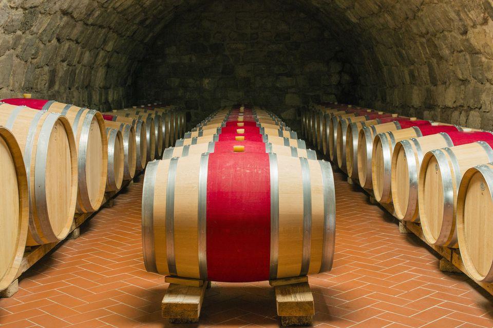 Austria, Burgenland, wine cellar, wine casks