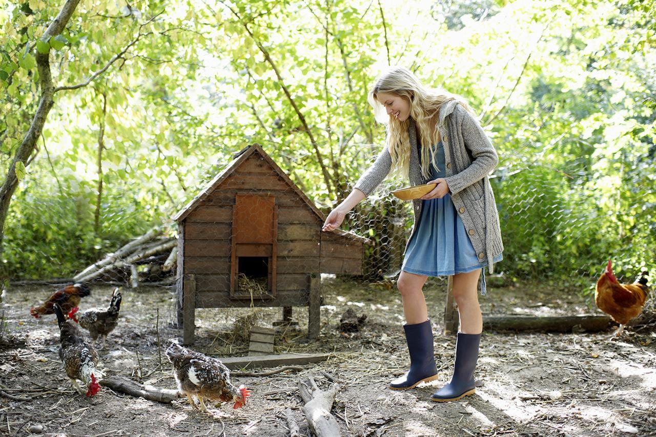 Small Farm House Decor Interior: Easy Animals To Raise On The Small Farm