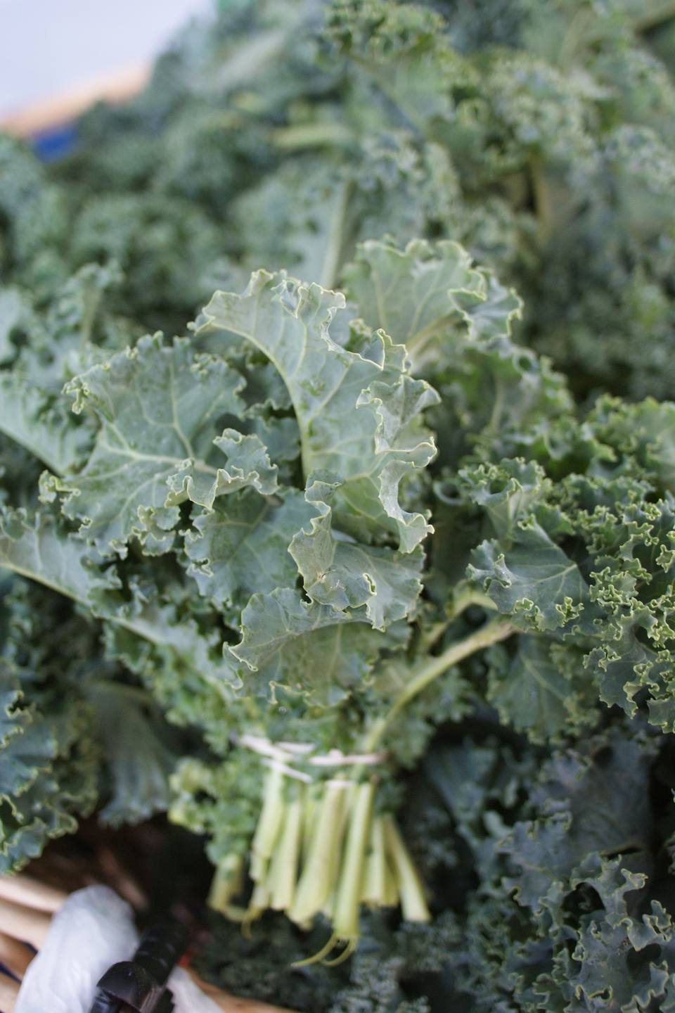 Guide to cooking greens from collards to turnips for Cocinar kale