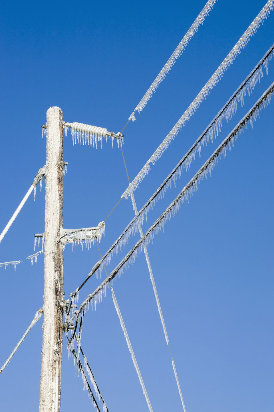 Power lines in ice
