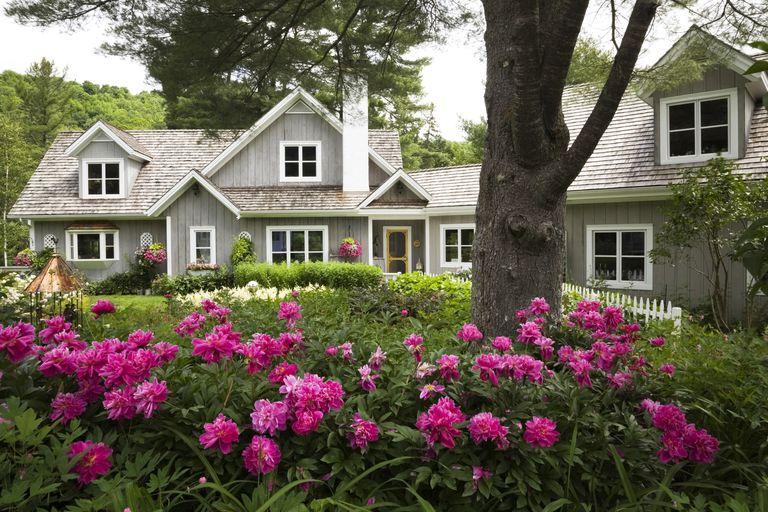 Jardín frente a la casa