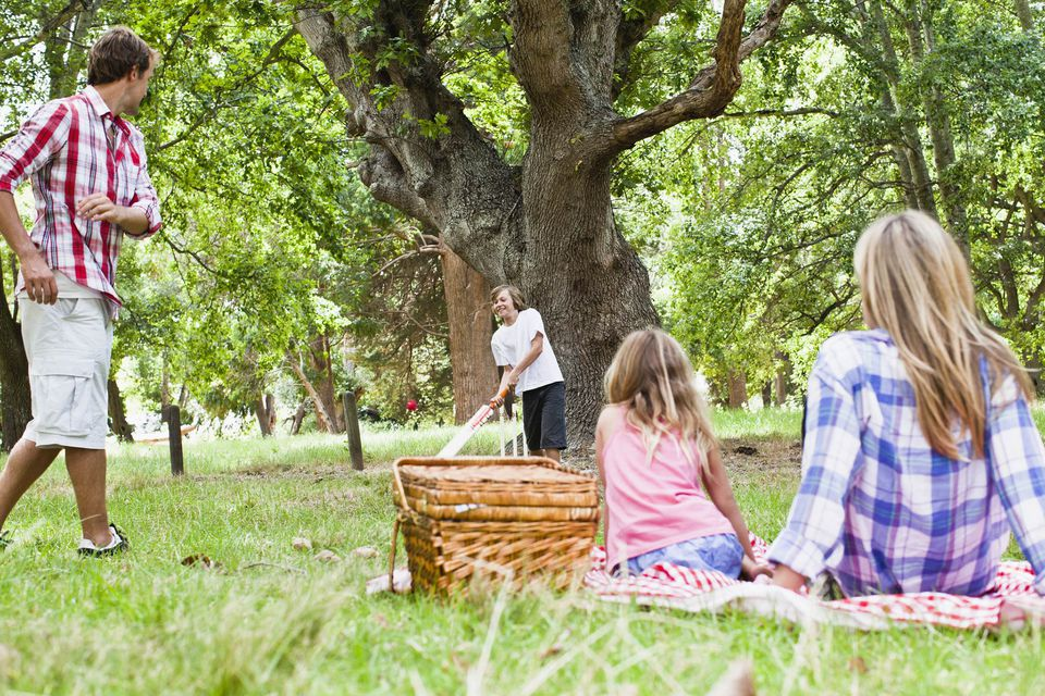A picture of a family picnic in the park