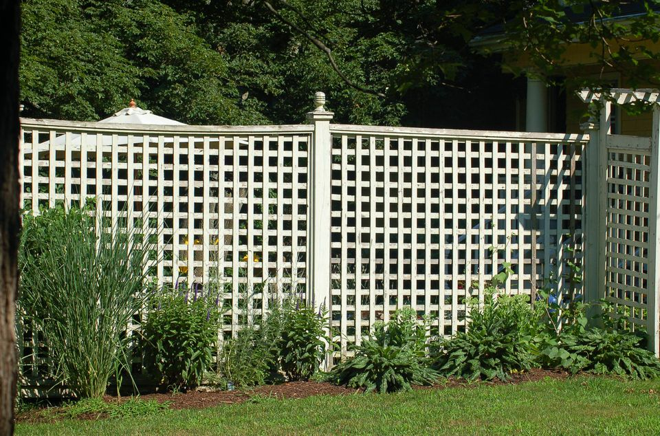 Image: lattice fence with planting.