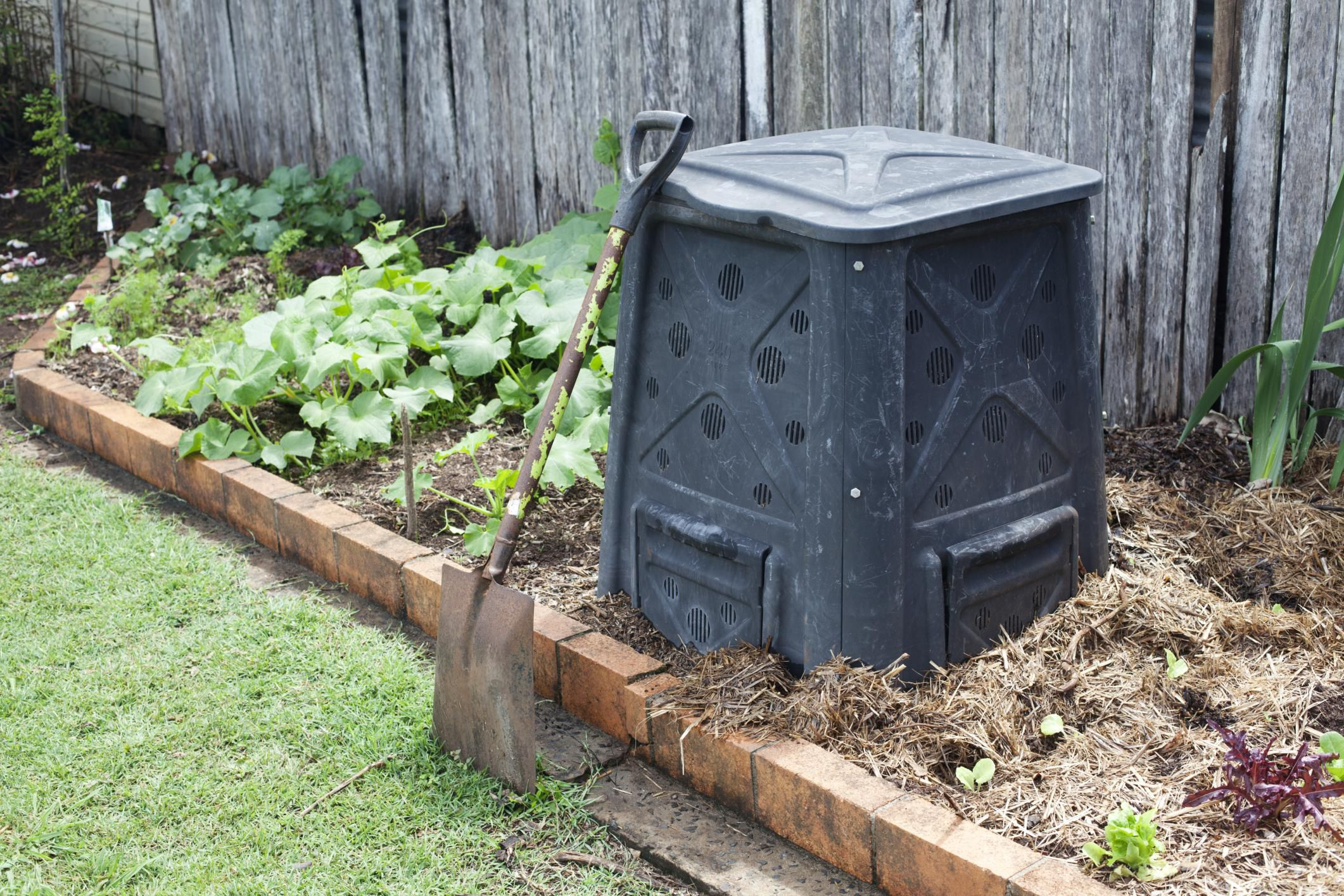 composting weeds advice and what to avoid. Black Bedroom Furniture Sets. Home Design Ideas