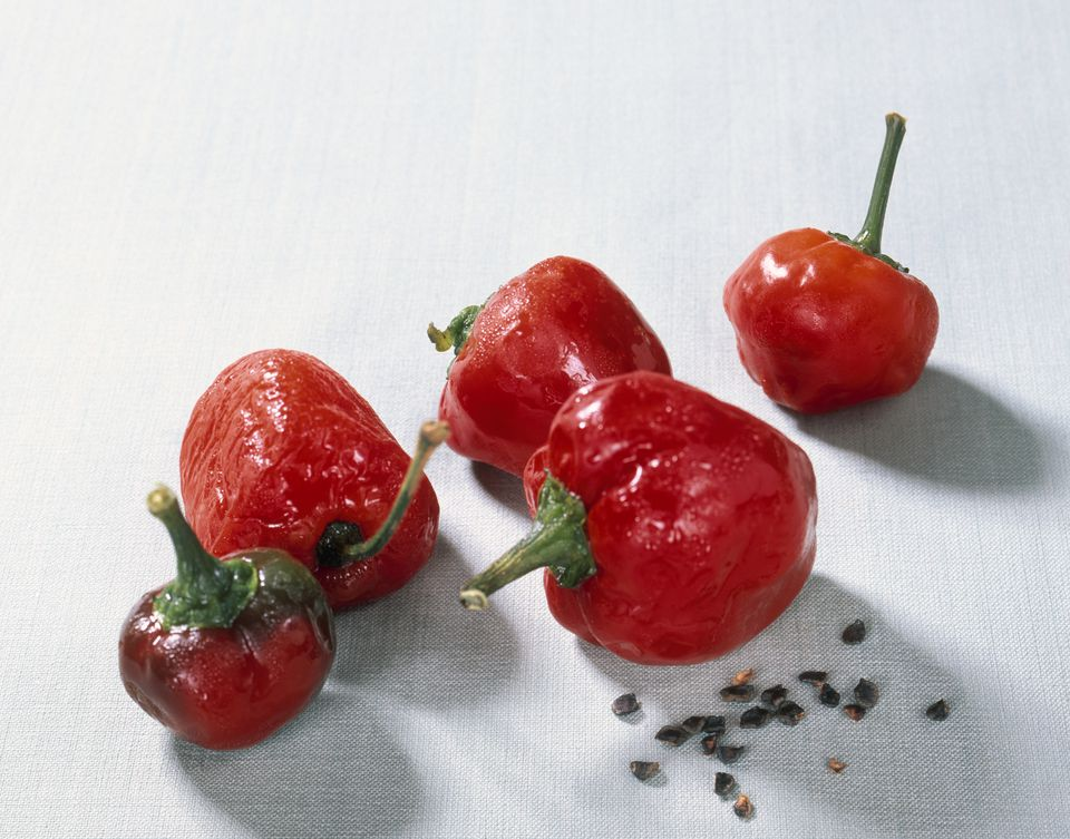 Rocoto chile peppers