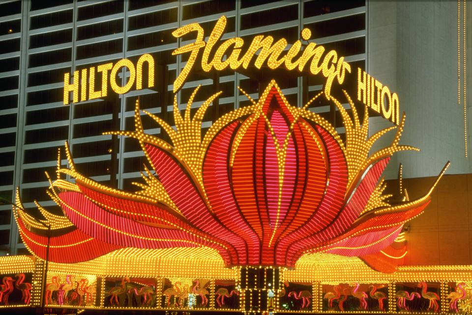 Neon Sign at the Flamingo Hilton, Las Vegas