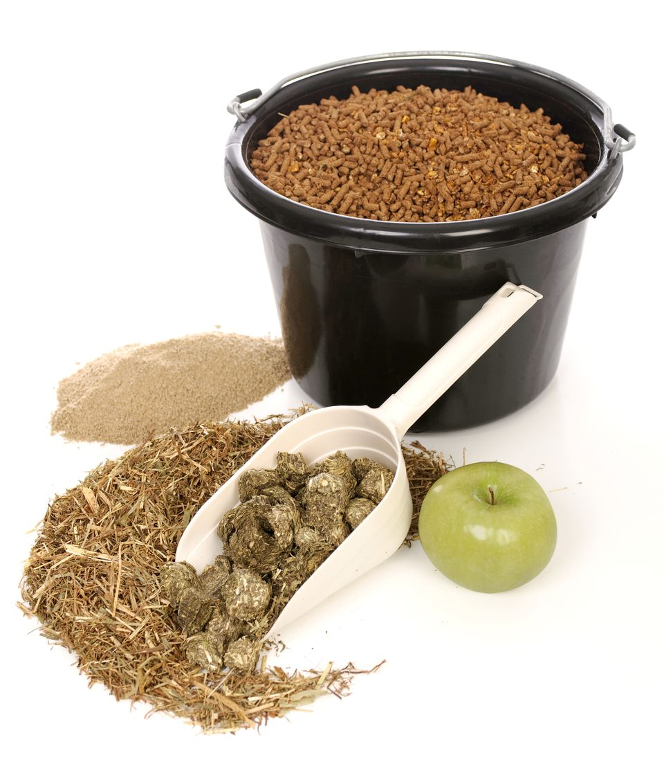 Various types of horse feeds and supplements.