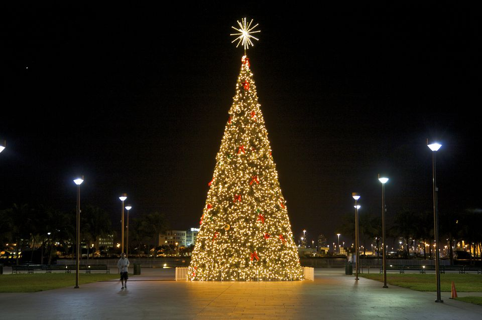 A brilliantly-lit Christmas tree in Bayfront Park, Miami