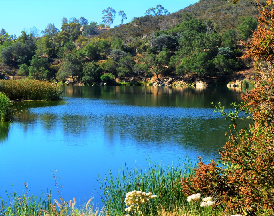 Top ten lakes for fishing in san diego county if your lake is home to a 251 pound largemouth bass you have to be ranked near the top right dixon lake northeast of escondido is making news from ccuart Image collections