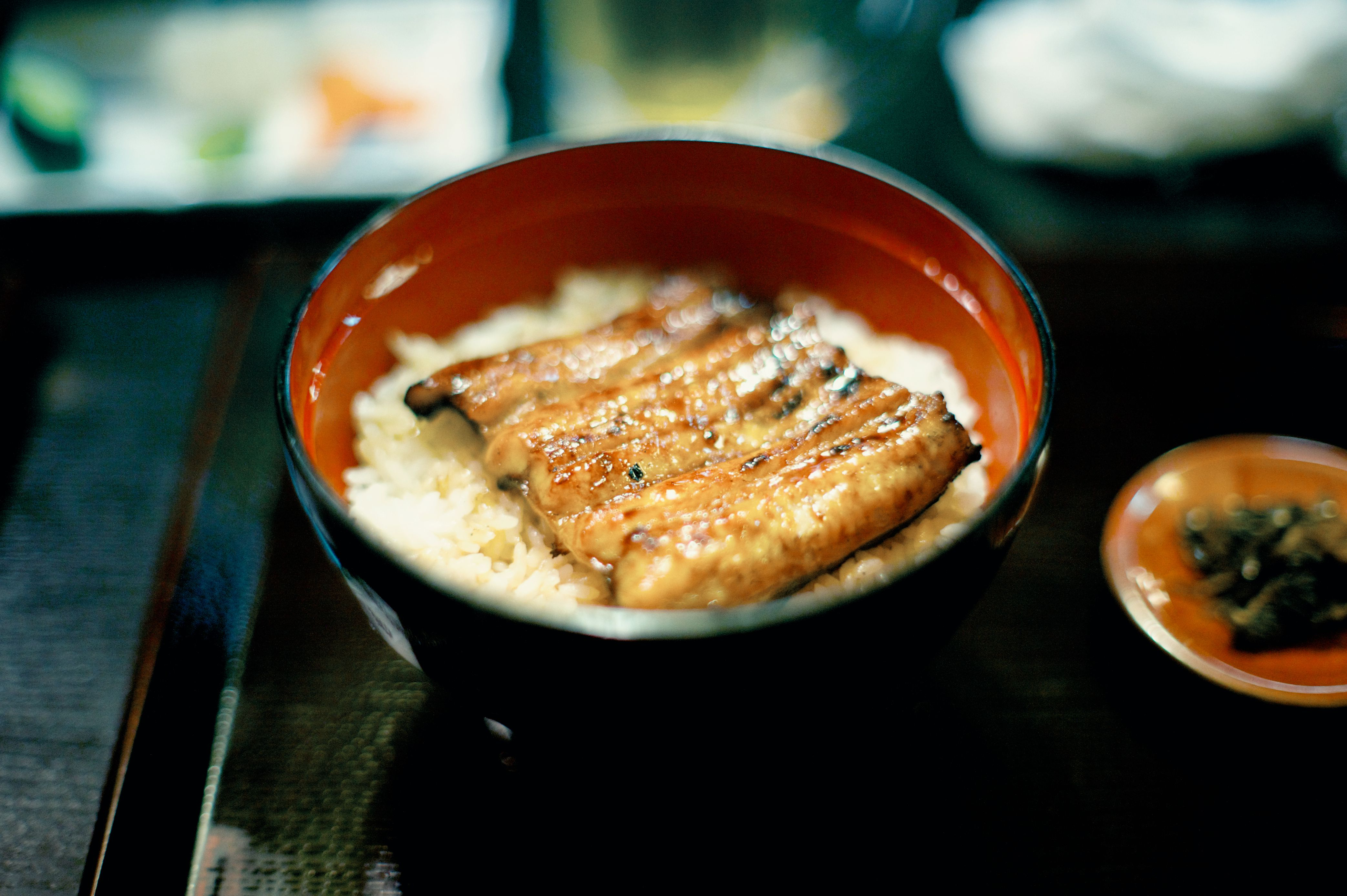 7 easy japanese recipes to try at home easy japanese broiled unagi eel with rice recipe forumfinder Gallery