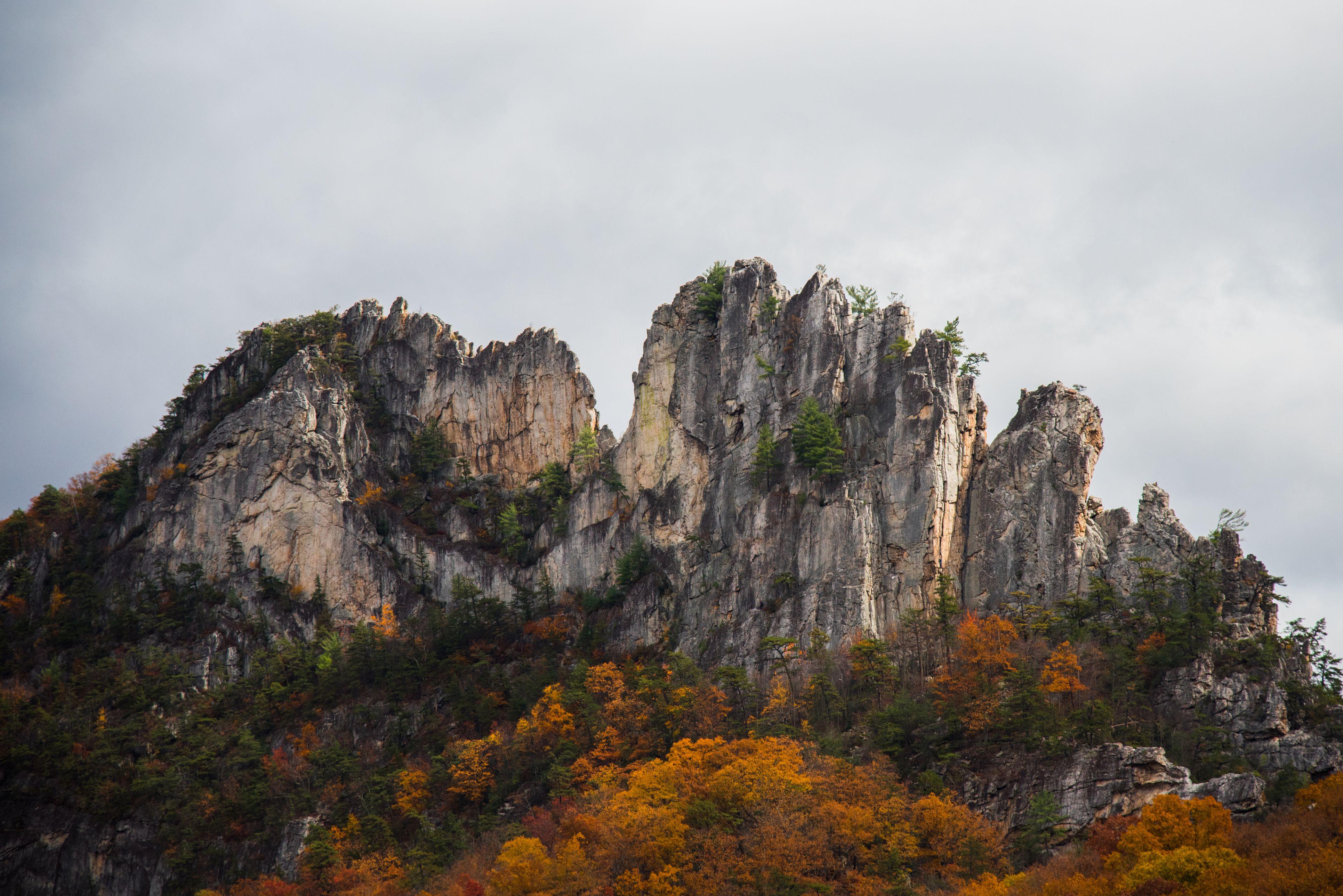 Discover Majestic Seneca Rocks West Virginia