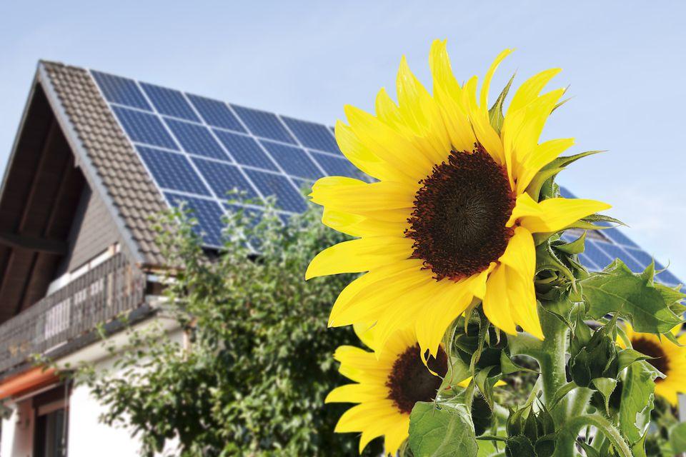 solar panel home ideas