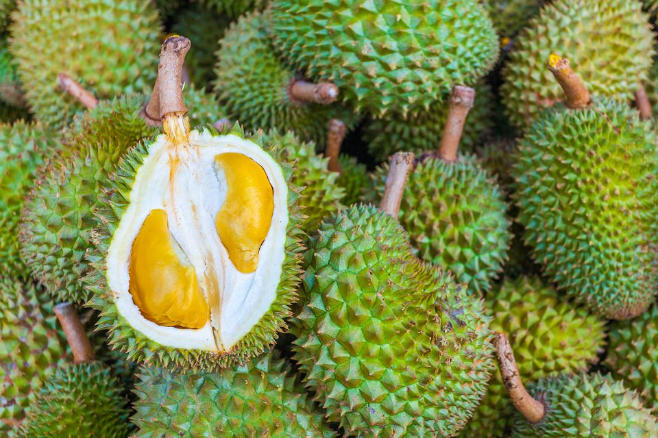 Durian, Malaysia's King of Fruits