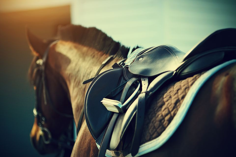 Saddle on the back of a brown horse