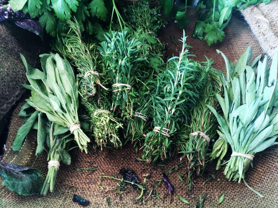 Variety of herbs