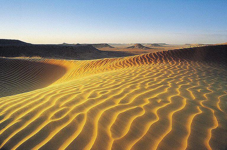 Sahara Desert on the Tropic of Cancer