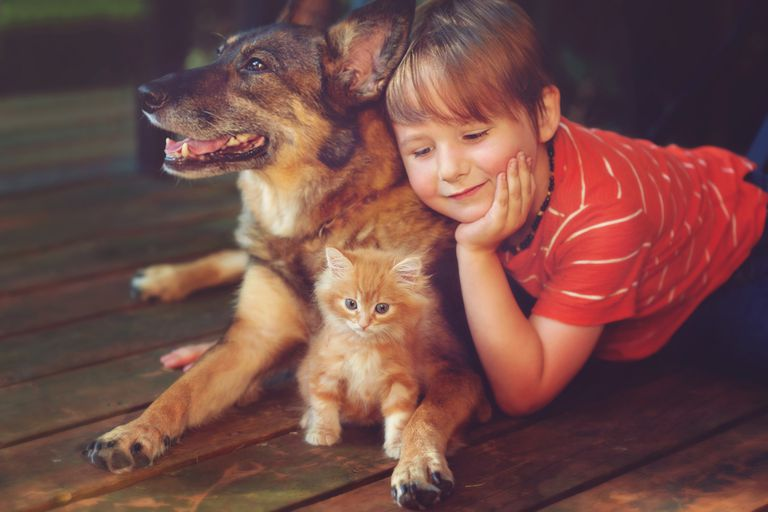 Teach kids to treat pets kindly