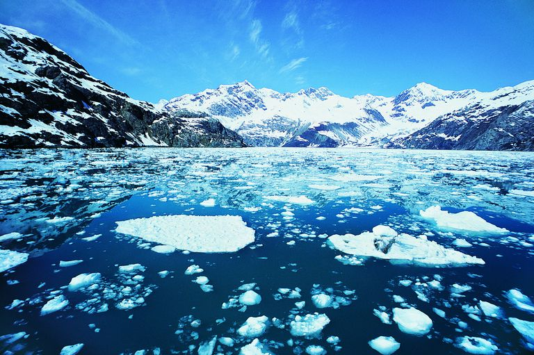 Ice floats on water because hydrogen bonding makes liquid water unusually dense.