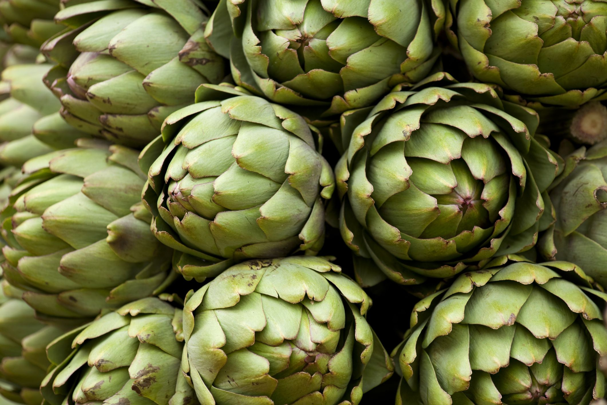 Artichoke Nutrition And Health Benefits