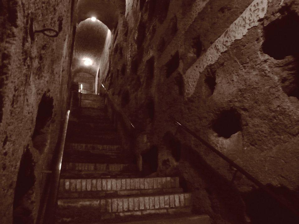 Herb Neufeld Follow Parco Regionale dell'Appia Antica, Rome