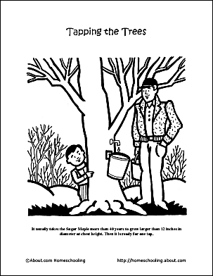 Maple Syrup Day Coloring Page