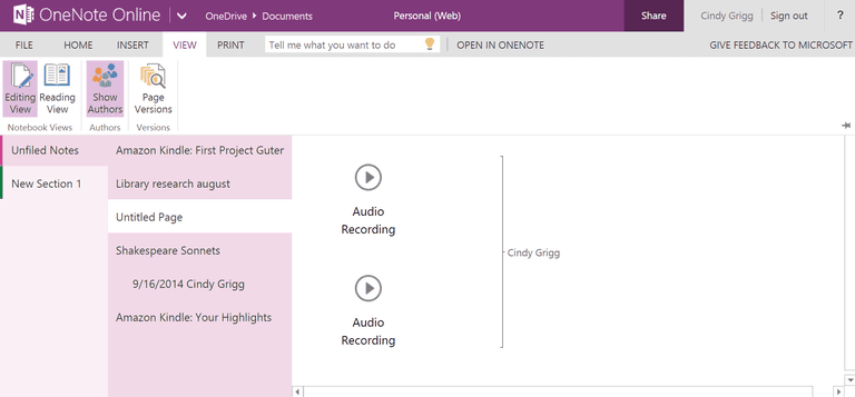 Show-Authors-in-OneNote-Online.PNG