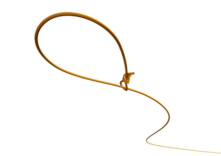 Lasso on white background