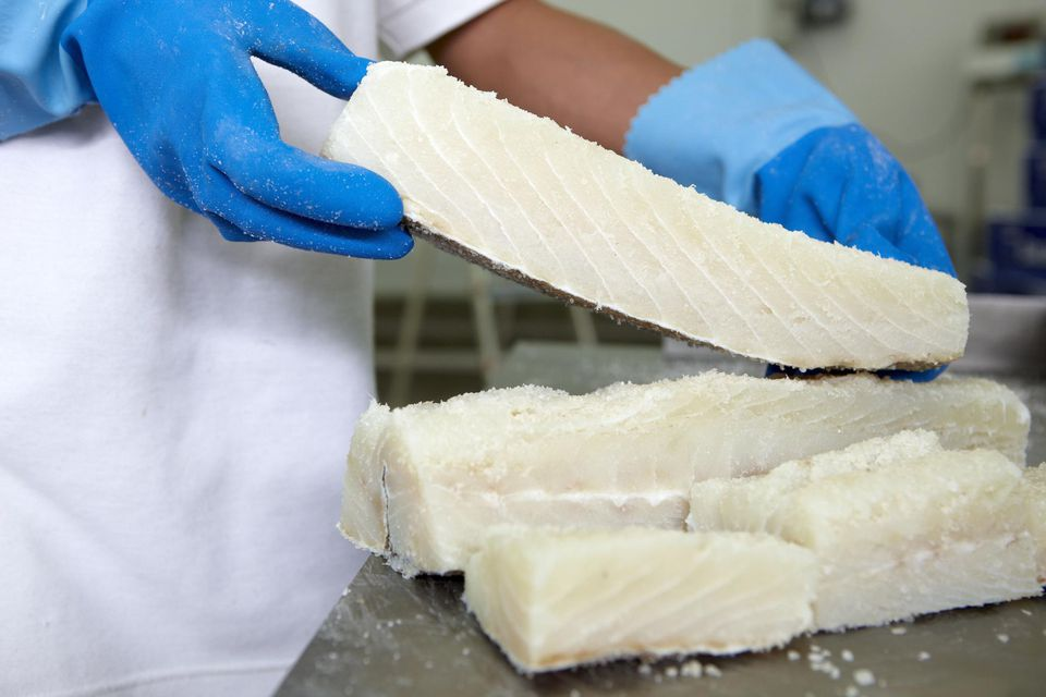 Salt cod loins, refrigerated and frozen salt cod distribution