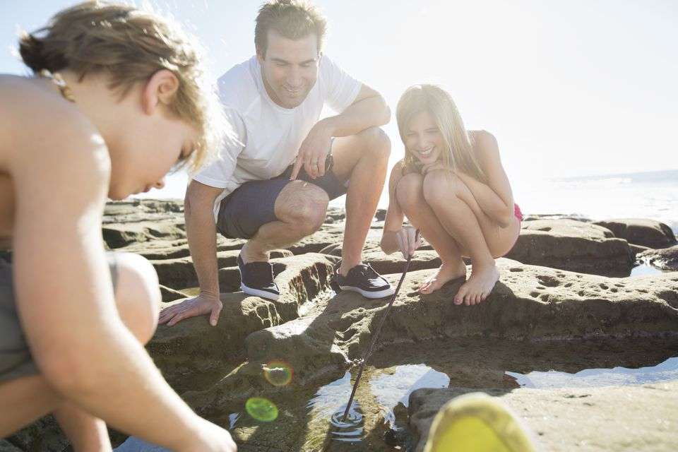 Tide pools are one of many free kid activities in San Diego.