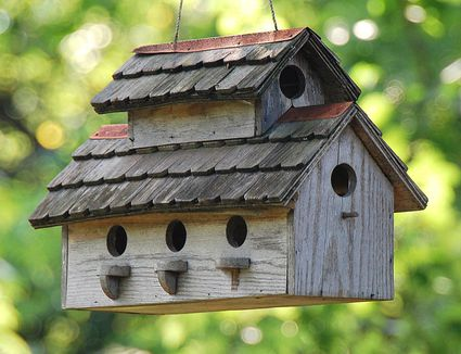 List of free bird house plans online for Best birdhouse designs