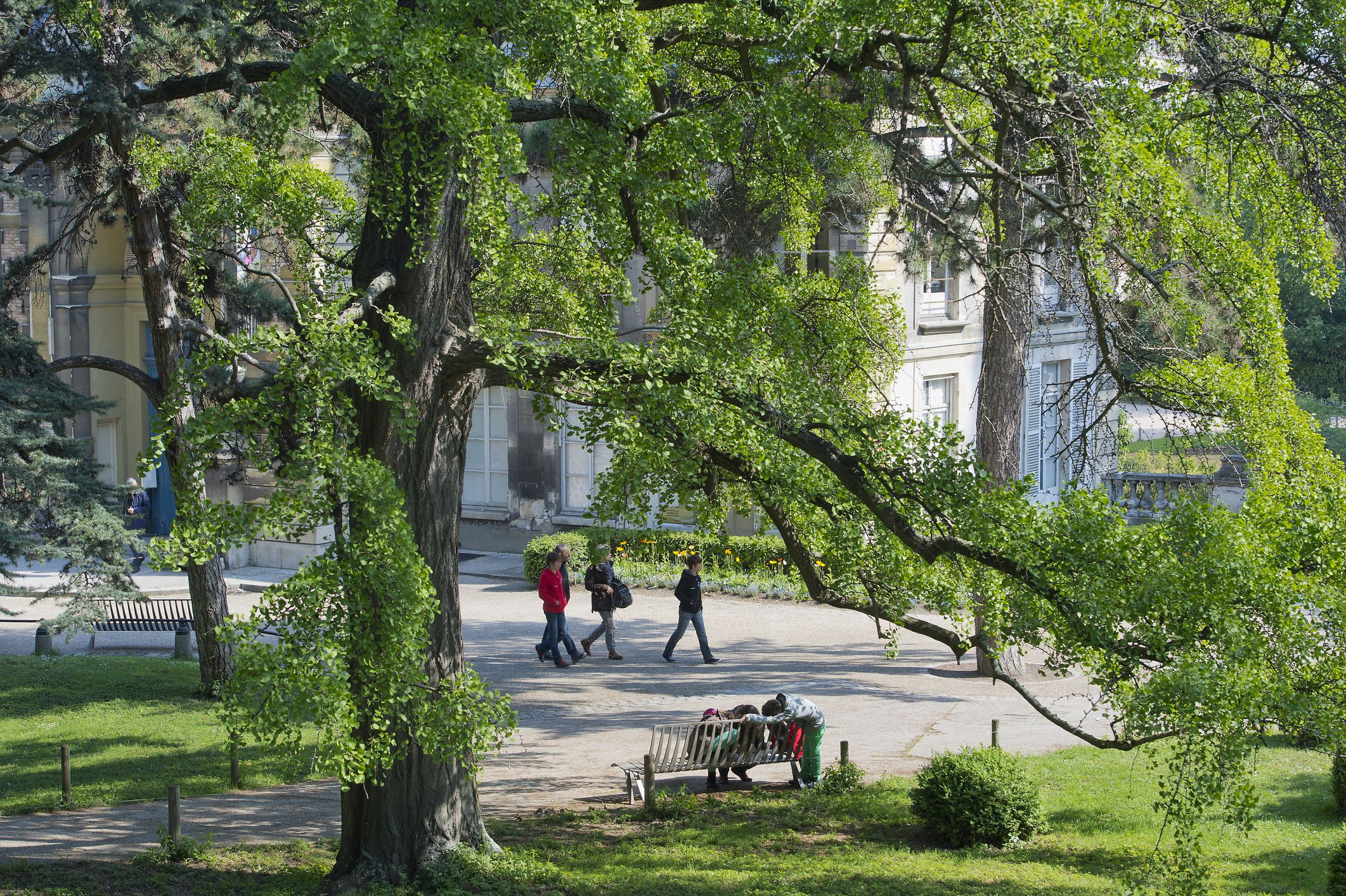 11 best parks and gardens in paris tranquil havens for Plante 1 euro paris
