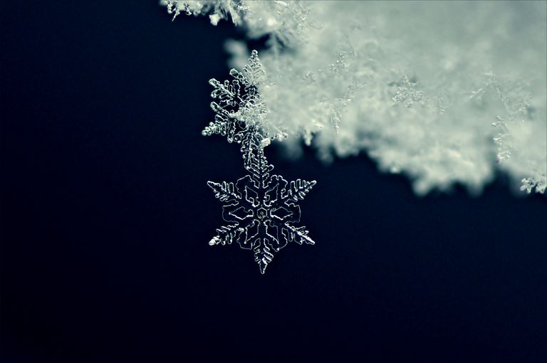 Close up of a snowflake
