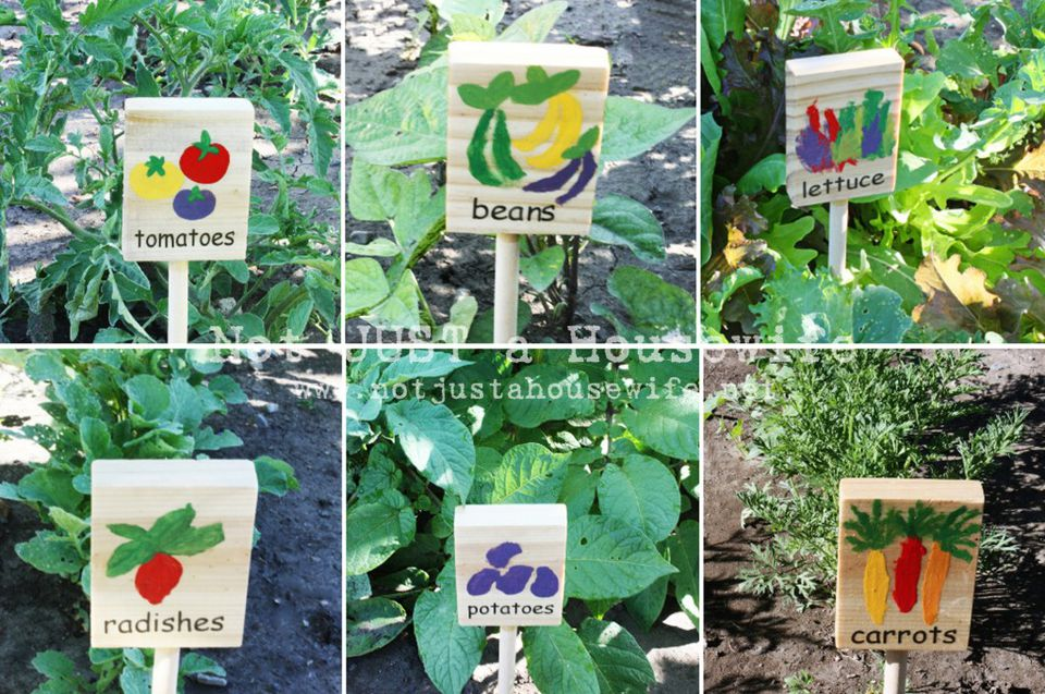 DIY Plant Markers for the Garden
