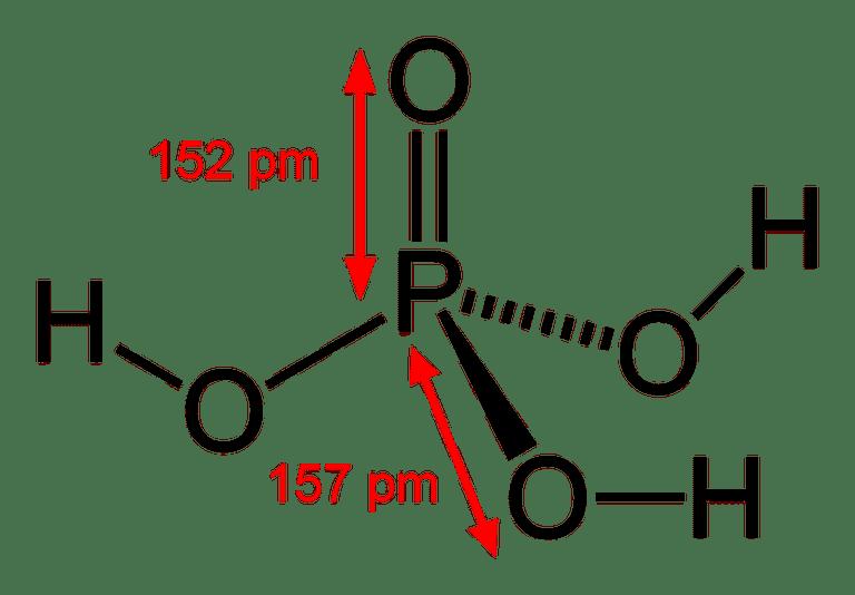 Phosphoric acid is an oxyacid acid.