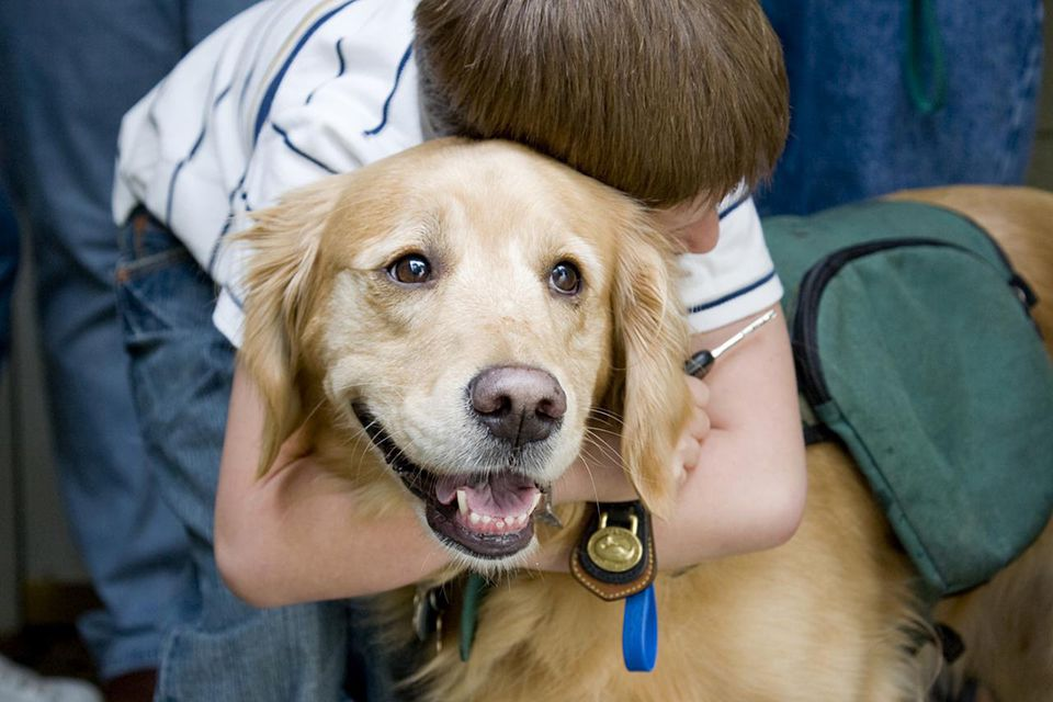 Boy with autism and a therapy dog